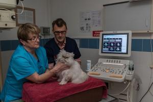 L'écho-cardiographie par le Dr Bouton